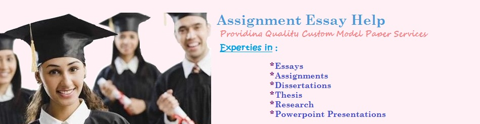 Assignment Help India
